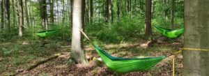 Waldbaden in Dormagen, Tierpark Tannenbusch